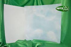 Пластины вальцованные для прокладок и диафрагм (ХТЗ, ХТН) ТУ 84-522